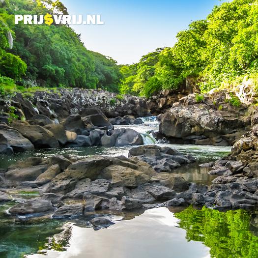 Vakantie Mauritius - Black River Gorges National Park