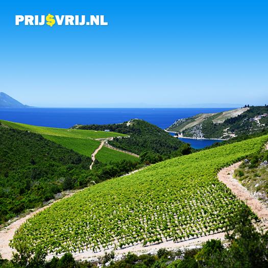 De wijngaarden van Kroatië