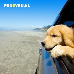 Hond op vakantie - Inpaklijst