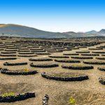 Top 5 excursies vakantie Lanzarote