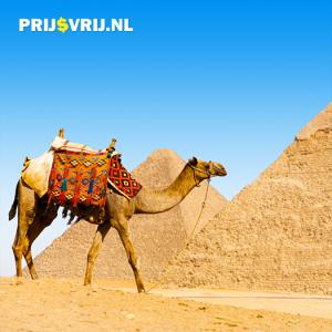 actief in Egypte - bezoek de Egyptische oudheden