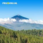 Dé bezienswaardigheden van het prachtige Tenerife
