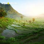 Vakantie Bali: het betoverende eiland