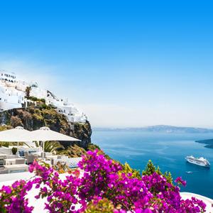paarse bloesem in Santorini met uitzicht op zee en op de achtergrond de witte huisjes op de kliffen
