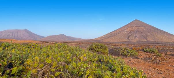 Vulkanen en cactussen op Fuerteventura